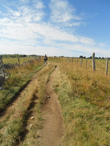 Chemin de Compostelle - Traversée de l'Aubrac