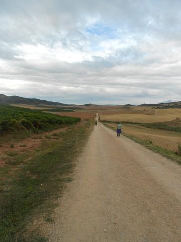 Camino francès - Grand chemin large et régulier
