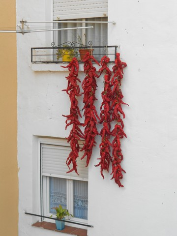 Camino francès - Viana